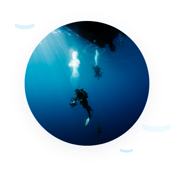 Photo of a diver